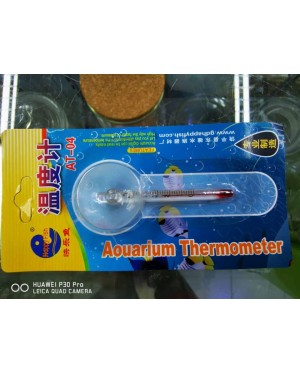Glass Thermometer Mini