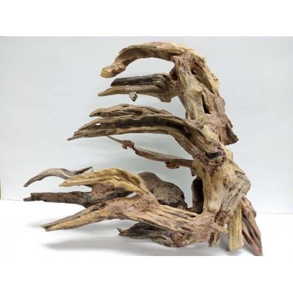 Bonsai Tree 30L x 15W x 23H cm