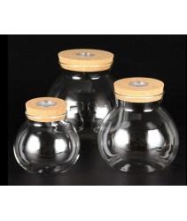 Terrarium Bowl With Light (10cm, 13cm, 16cm)